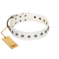 """Fresh Breeze"" FDT Artisan Elegant White Amstaff Collar with Silvery Studs"