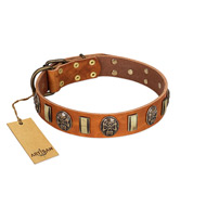 """Strike of Rock"" FDT Artisan Tan Leather Amstaff Collar with Plates and Medallions with Skulls"