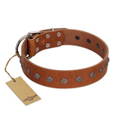 """Daintiness"" Designer Handmade FDT Artisan Tan Leather Amstaff Collar with Silver-Like Adornment"