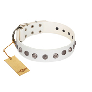 """Solar Energy"" FDT Artisan White Leather Amstaff Collar with Silver-like Studs and Medallions"