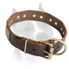 Available In 3 Colors Amstaff Dog Collar