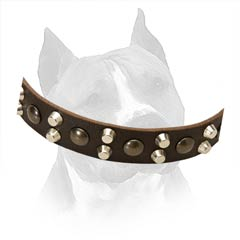 Soft Leather Collar Is Very Pleasant To The Touch