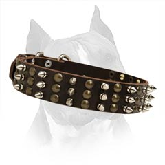 Pleasant To The Dog's Skin Leather Dog Collar