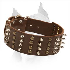 Handcrafted Leather Dog Collar With Strong Hardware