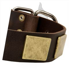 Trendy Dog Collar For Amstaff Dog Is Very Comfortable  For Wearing