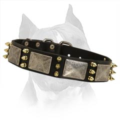 Extra Wide Comfortable Leather Dog Collar