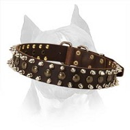 Leather Dog Collar With Rust Resistant Fittings