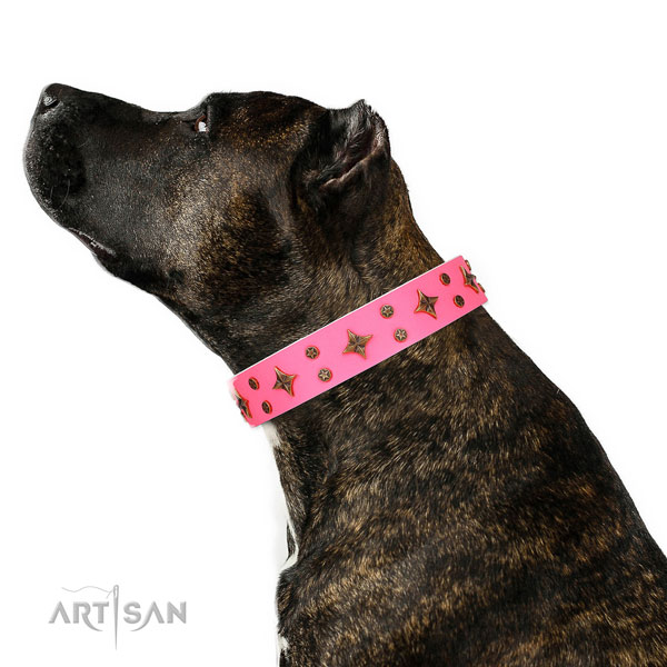 Basic training decorated dog collar of reliable material