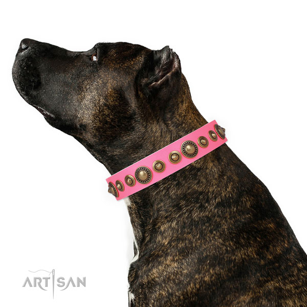 Corrosion proof buckle and D-ring on leather dog collar for stylish walking