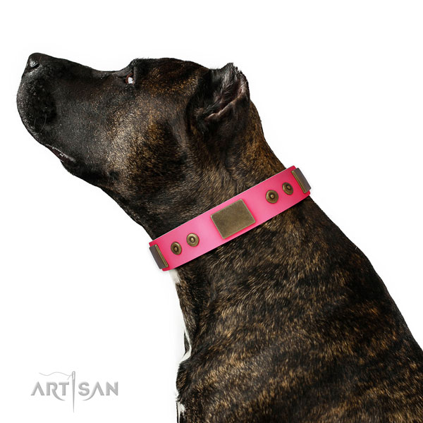 Unique natural genuine leather collar for your lovely four-legged friend
