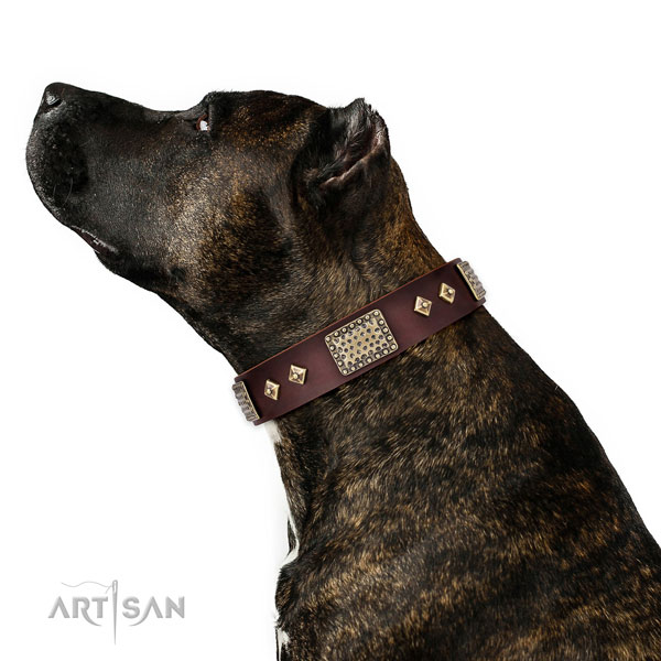 Durable basic training dog collar of leather