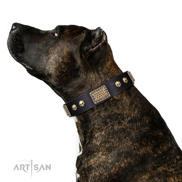 Reliable buckle on full grain genuine leather dog collar for fancy walking