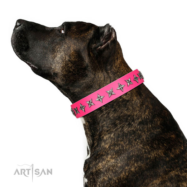 High quality natural leather dog collar with impressive adornments