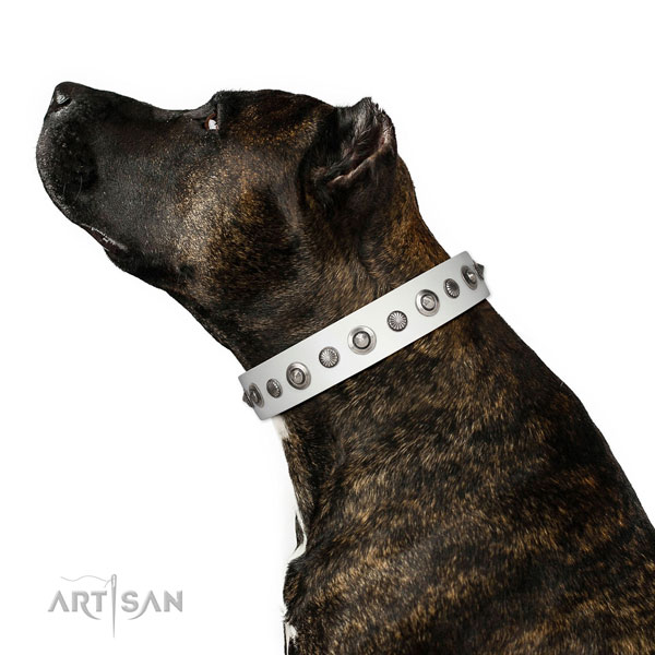 Natural leather collar with rust-proof buckle for your attractive pet
