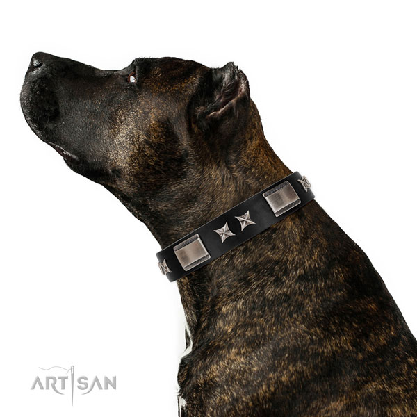 Comfy wearing soft natural leather dog collar with decorations