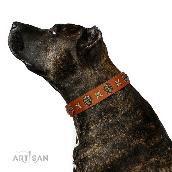 Adjustable natural leather dog collar with embellishments