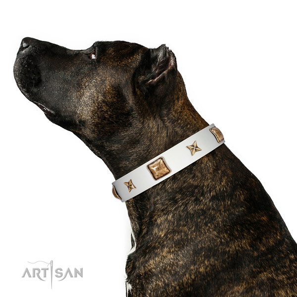 Full grain natural leather collar with decorations for your impressive doggie