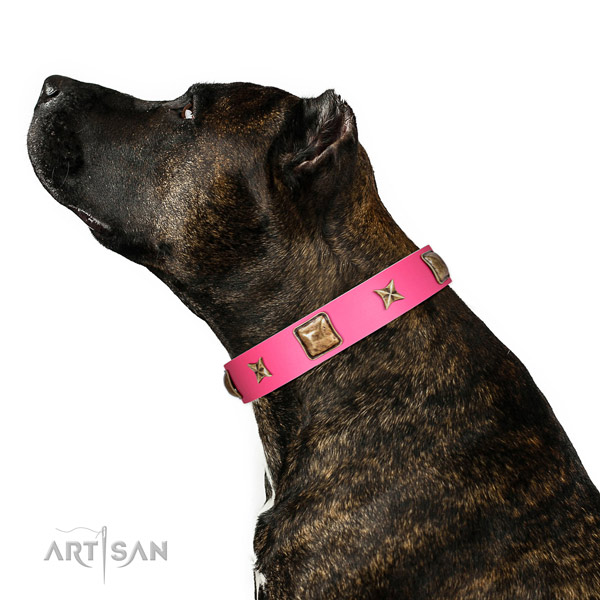 Full grain natural leather dog collar of soft to touch material with significant decorations