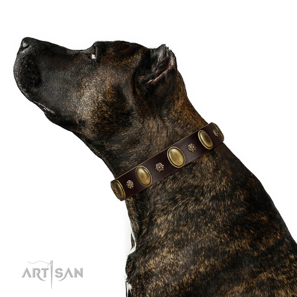 Comfortable wearing high quality genuine leather dog collar with adornments