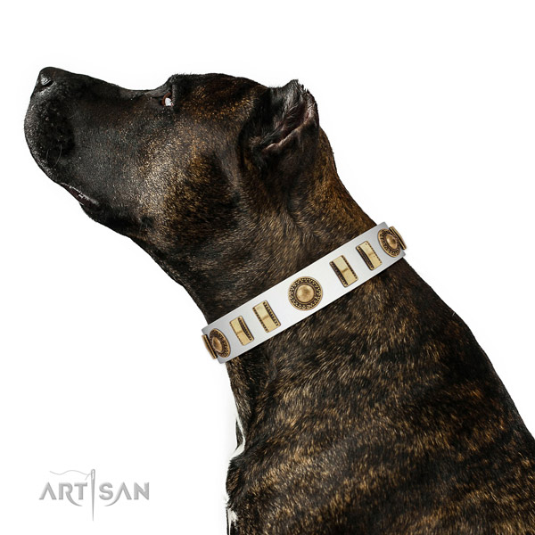 Easy wearing leather dog collar with corrosion resistant traditional buckle