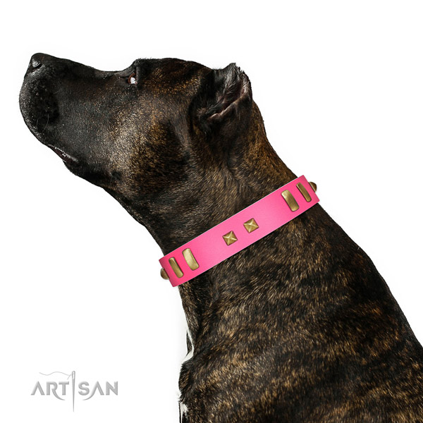 Stylish design adorned full grain genuine leather dog collar of gentle to touch material