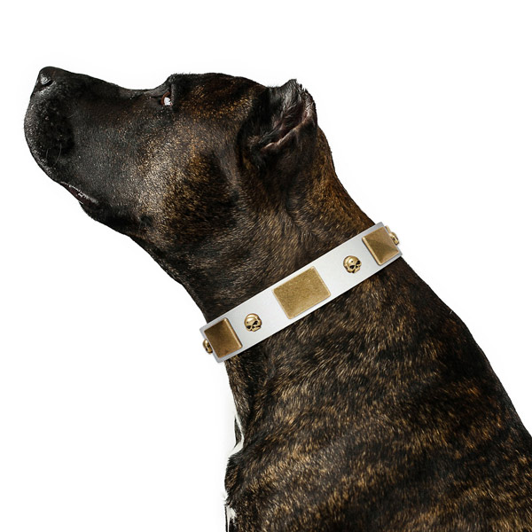 Soft to touch full grain leather dog collar handmade of genuine quality material
