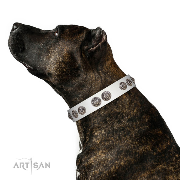 Easy to adjust leather dog collar for fancy walking