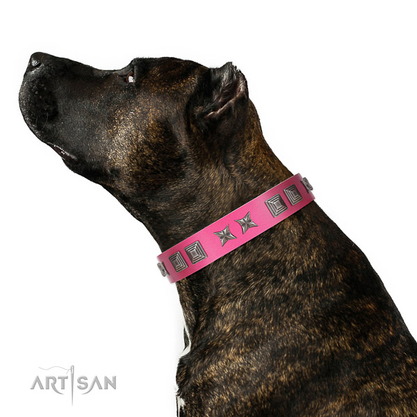 Leather dog collar with unique adornments handcrafted pet