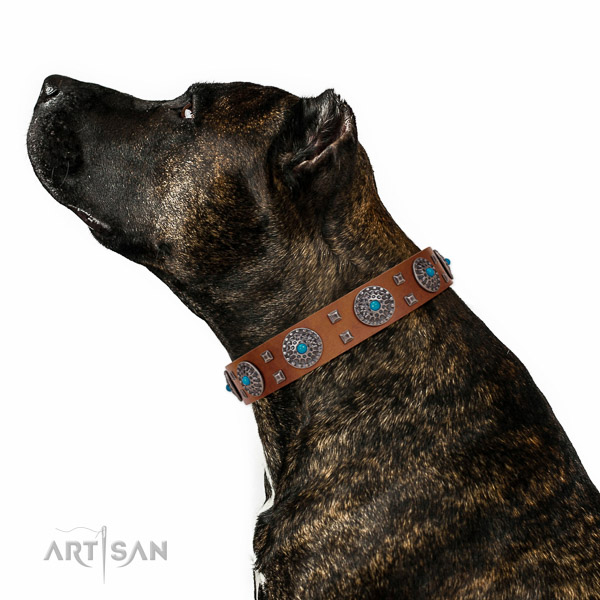 Comfortable wearing full grain natural leather dog collar with unique studs