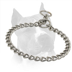 Choke Collar Chrome Plated For Amstaff With Fur Saving Links