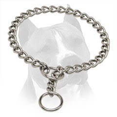 Amstaff Metal Choke Collar  With Chrome Plated O-Ring