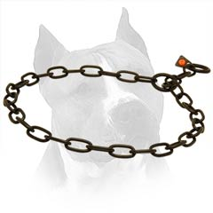Choke Collar For Amstaff Of Black Stainless Steel Chain