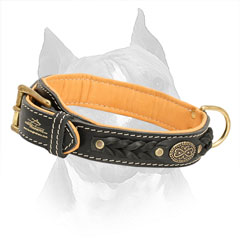 2 Ply Leather Amstaff Collar Braided
