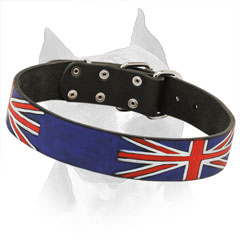 Walking Amstaff Leather Collar with Union Jack Painting