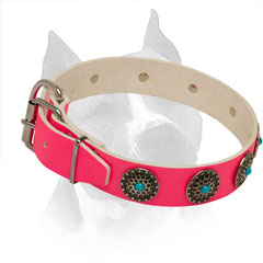Pink Leather Collar for Amstaff with Rust Resistant Hardware