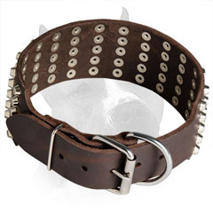 Wide Leather Collar for Amstaff with Rust-proof Hardware