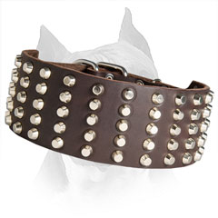 5 Row Studded Wide Amstaff Leather Collar
