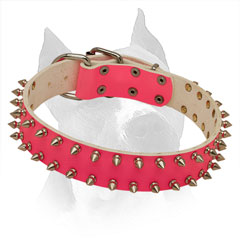 Spiked American Staffordshire Terrier Pink Leather Collar with Stylish Decoration