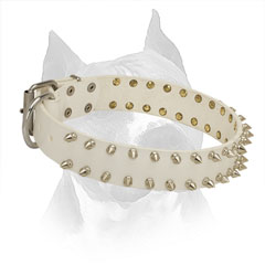 Amstaff Spiked White Leather Collar for Walking in Style