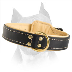 Carefully Stitched With Strong Thread Leather Dog  Collar