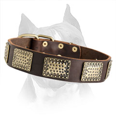 Fully Safe Soft Leather Dog Collar For Amstaff Dog
