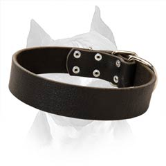 100% Full Grain Natural Leather Collar For Amstaff