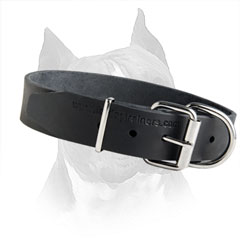 Classy Dog Collar Is Available In Two Sizes