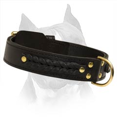 Exclusive Braided Leather Dog Collar For Amstaff