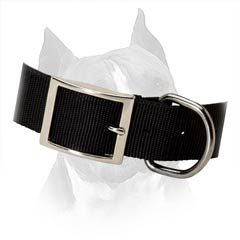 Amstaff Dog Collar With Steel Nickel Plated Fittings