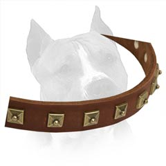 Soft Natural Leather Is Used For Creation Of This Dog  Collar