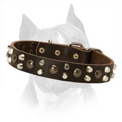 Daily Walking In Style Super Strong Amstaff Leather Dog  Collar