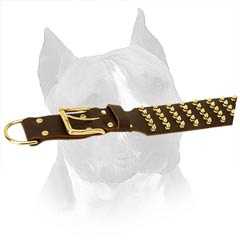 Extraordinary Decorated With Spikes Leather Dog Collar