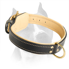 100% Full Grain Natural Leather Dog Collar