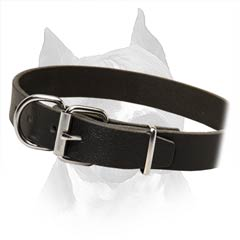 Premium Leather Dog Collar With Steel Hardware